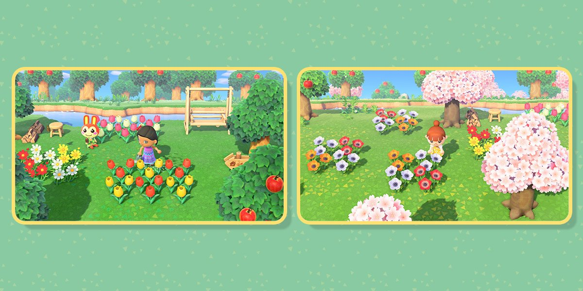 First image of two: A player waters a patch of alternating tulips in red and yellow. Second image: A player cares for a patch of red, yellow, and orange windflowers.