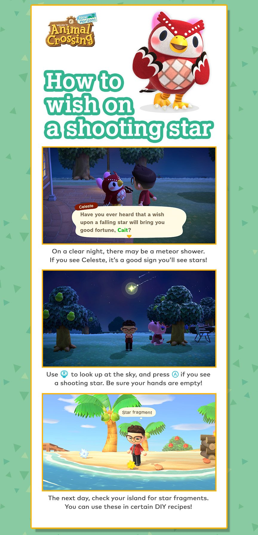 On a clear night, there may be a meteor shower. If you see Celeste, it's a good sign you'll see stars! Use [R] to look up at the sky, and press [A] if you see a shooting star. Be sure your hands are empty! The next day, check your island for star fragment